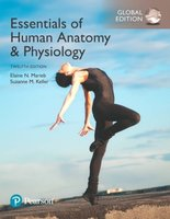 9781292216119 | Essentials of Human Anatomy & Physiology, Global Edition